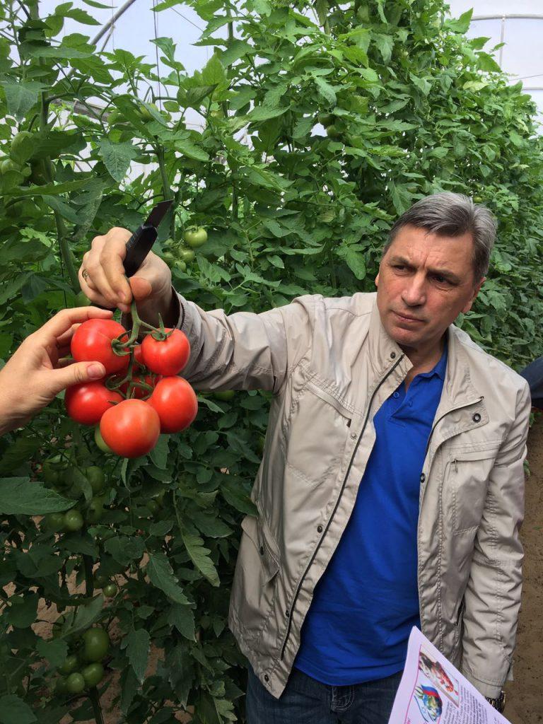 Полезное садоводам